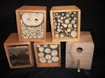 Insect and bee boxes by Wood Cave